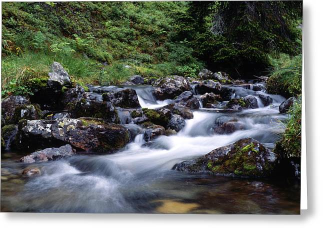 Beautiful Scenery Greeting Cards - Mountain stream Greeting Card by IB Photo