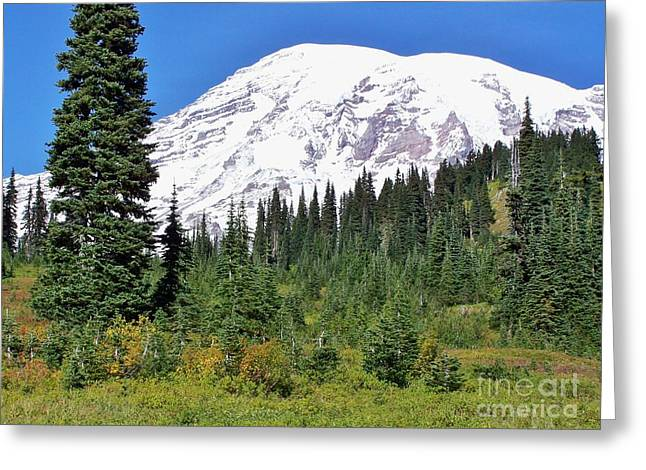 Snow Scene Landscape Greeting Cards - Mt Rainier Greeting Card by Janice DeLawter