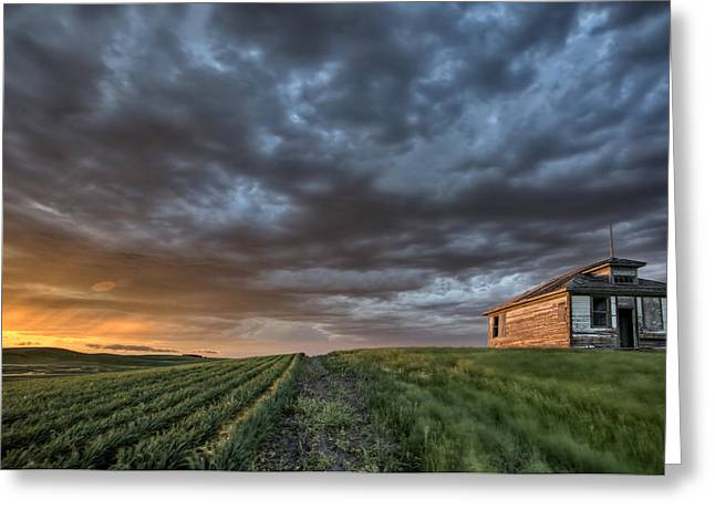 Prairies Greeting Cards - Newly planted crop Greeting Card by Mark Duffy