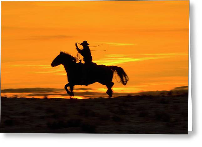 North America, Usa, Wyoming, Shell Greeting Card by Terry Eggers