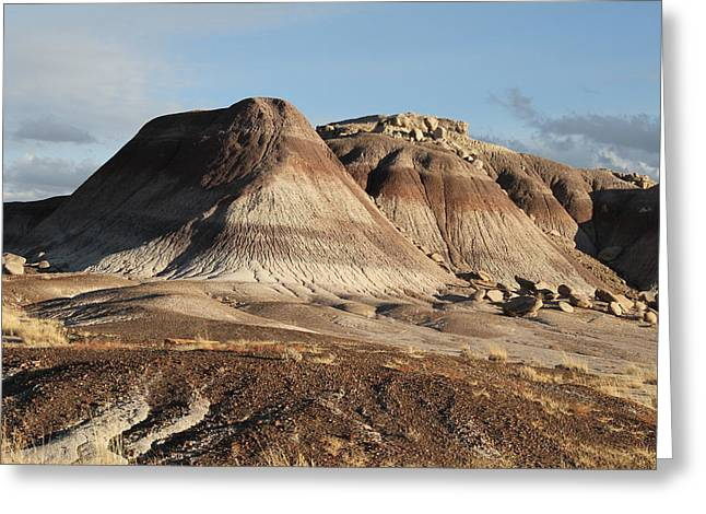 The Petrified Forest Greeting Cards - Petrified Forest Greeting Card by Guido Prussia