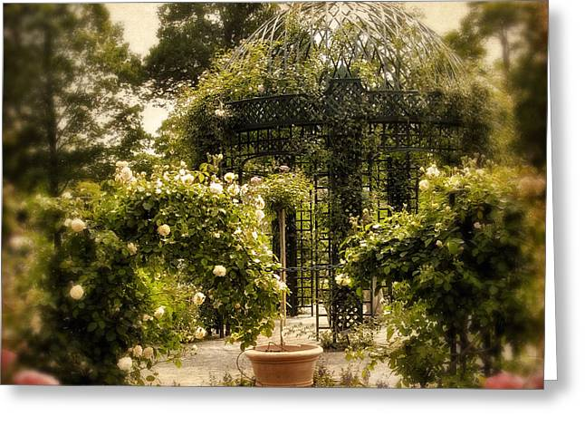 Vines Greeting Cards - Rose Arbor Greeting Card by Jessica Jenney