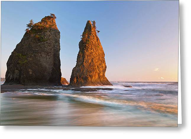 Usa, Washington, Olympic National Park Greeting Card by Jaynes Gallery