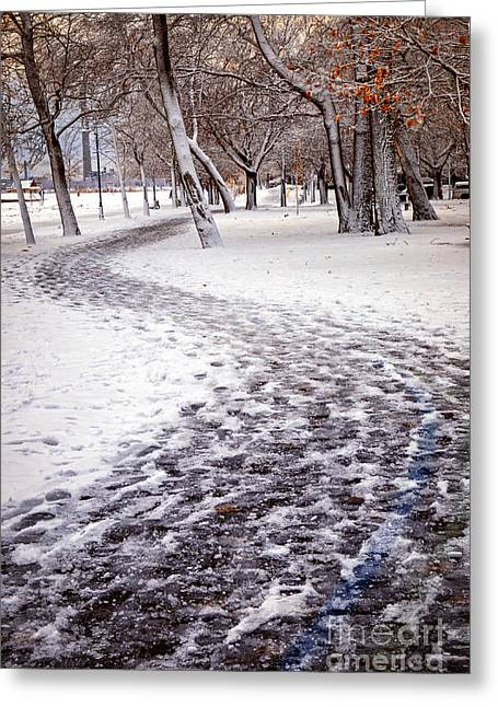 Winter Park Greeting Cards - Winter park Greeting Card by Elena Elisseeva