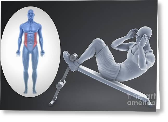 Physical Body Photographs Greeting Cards - Exercise Workout Greeting Card by Science Picture Co