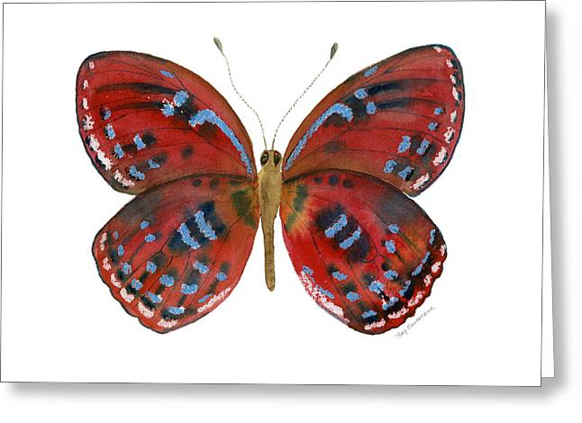 Red And Blue Greeting Cards - 81 Paralaxita Butterfly Greeting Card by Amy Kirkpatrick