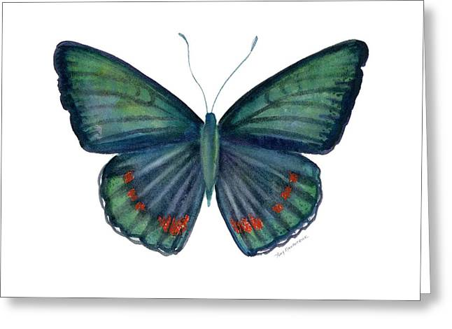 82 Bellona Butterfly Greeting Card by Amy Kirkpatrick