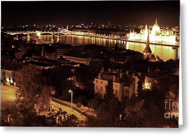 Budapest Hungary Night Panorama Greeting Card by Gregory Dyer
