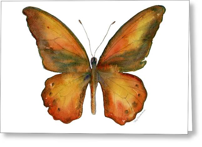 Orange And Brown Wings Paintings Greeting Cards - 85 Lydius Butterfly Greeting Card by Amy Kirkpatrick