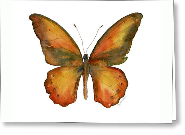 85 Lydius Butterfly Greeting Card by Amy Kirkpatrick