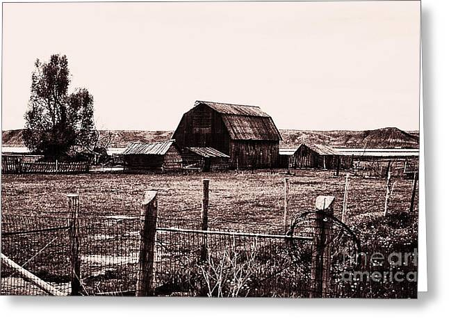 Old Fence Posts Digital Greeting Cards - 866 se  A Bit Of Country  1 Greeting Card by Chris Berry