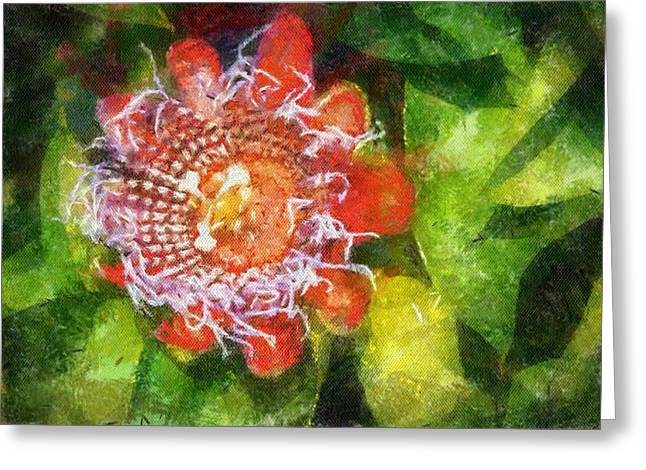 Passiflora Digital Art Greeting Cards - 9 - Passion Flower Greeting Card by Pat Harrison
