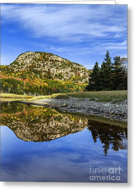 Pond In Park Greeting Cards - Acadia National Park Greeting Card by John Greim