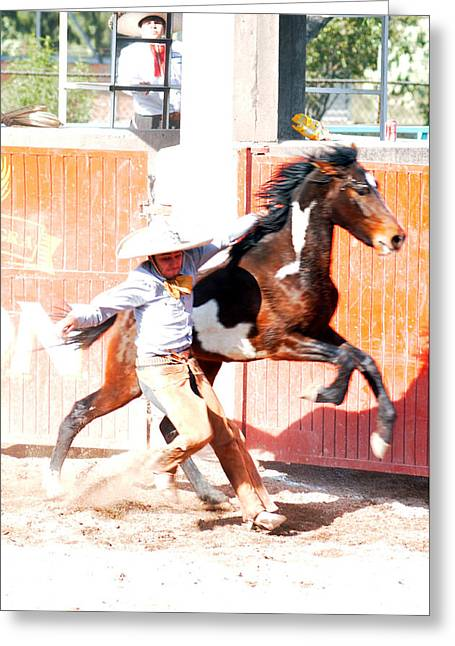 Lienzo Greeting Cards - Charro Greeting Card by Ok More Photos