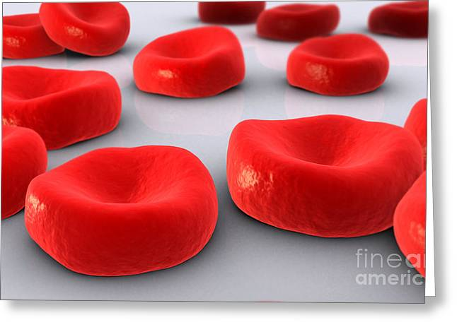 Red Cells Greeting Cards - Conceptual Image Of Red Blood Cells Greeting Card by Stocktrek Images