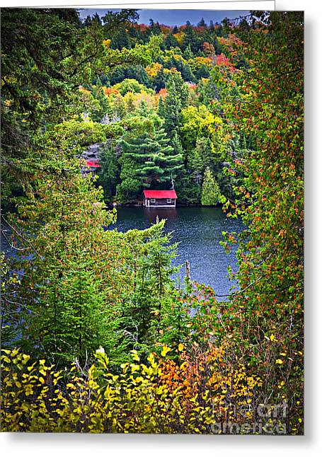 Autumn Greeting Cards - Fall forest and lake Greeting Card by Elena Elisseeva