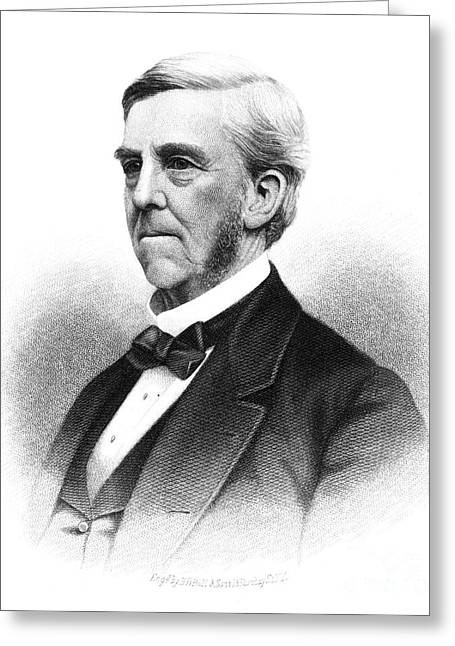 Sideburns Greeting Cards - Oliver Wendell Holmes Greeting Card by Granger