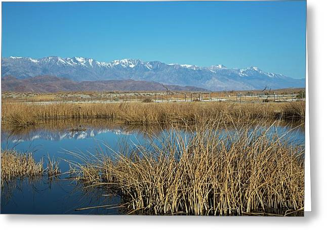 Owens Lake Greeting Card by Jim West
