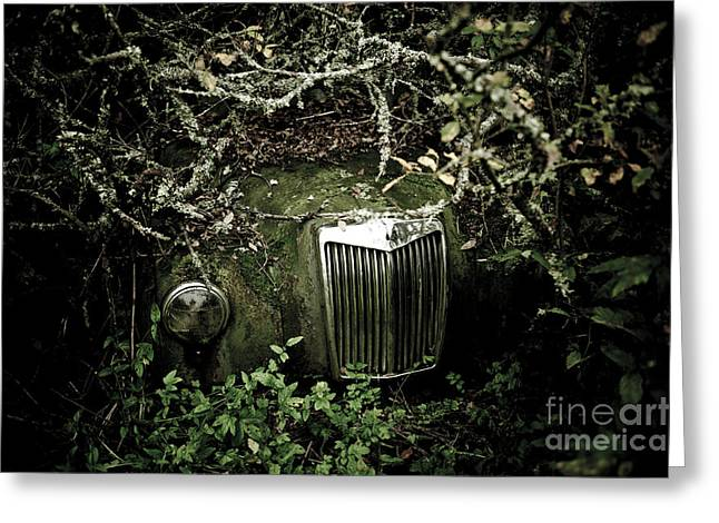 D700 Greeting Cards - The Car Cemetery Greeting Card by Geir Kristiansen