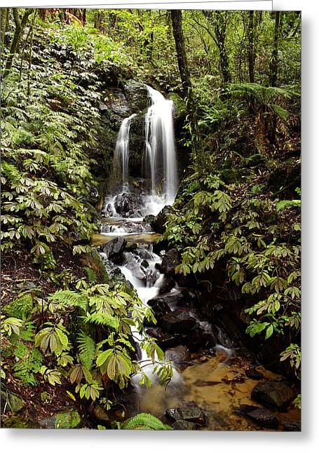 Environment Photographs Greeting Cards - Waterfall Greeting Card by Les Cunliffe
