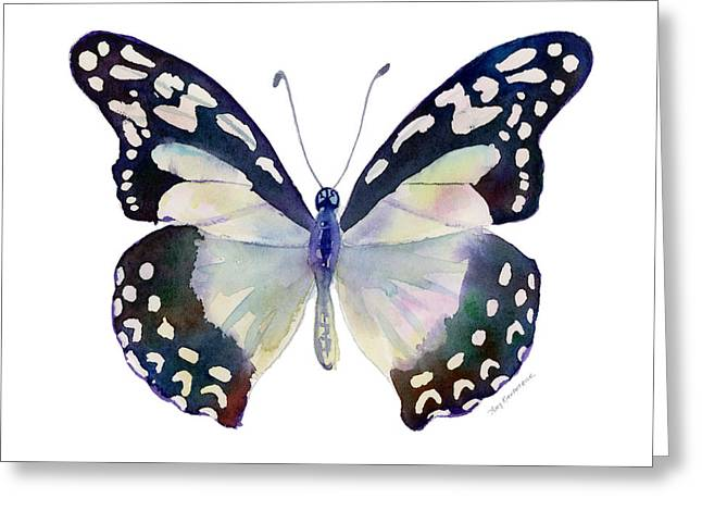 White Lady Greeting Cards - 90 Angola White Lady Butterfly Greeting Card by Amy Kirkpatrick