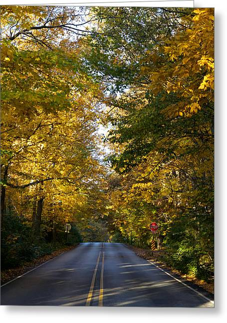 Indiana Autumn Greeting Cards - 91st Street Greeting Card by Sean Buchanan