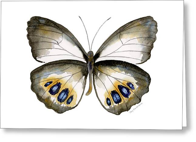 White Butterfly Greeting Cards - 95 Palmfly Butterfly Greeting Card by Amy Kirkpatrick