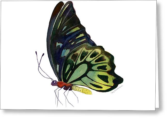 Background Paintings Greeting Cards - 97 Perched Kuranda Butterfly Greeting Card by Amy Kirkpatrick