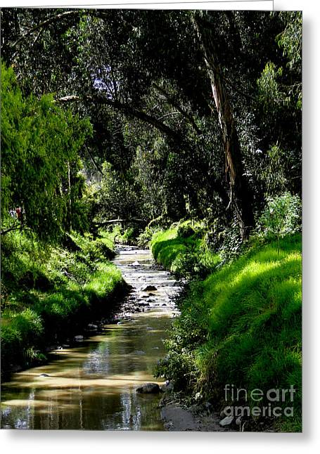 Babbling Greeting Cards - A Babbling Brook Greeting Card by Al Bourassa