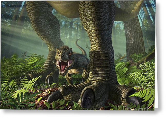 Between The Two Greeting Cards - A Baby Tyrannosaurus Rex Roars While Greeting Card by Jerry LoFaro