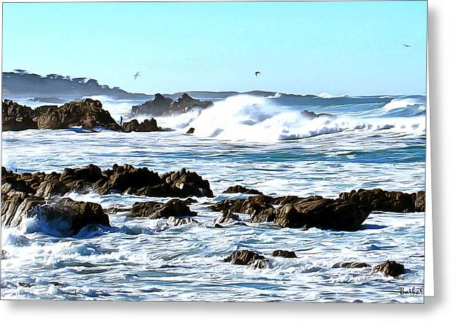California Ocean Photography Paintings Greeting Cards - Seascape and Sea Gulls Greeting Card by Barbara Snyder