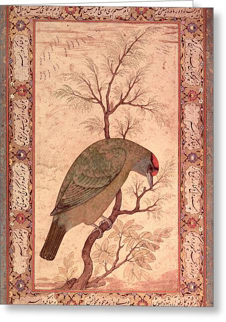 Branches Photographs Greeting Cards - A Barbet Himalayan Blue-throated Bird Jahangir Period, Mughal, 1615 Greeting Card by Mansur