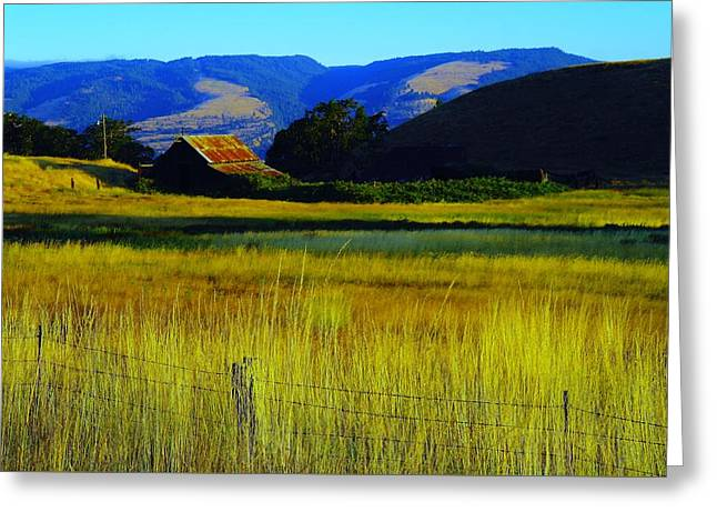 Old Barns Greeting Cards - A barn and field in the morning Greeting Card by Jeff  Swan