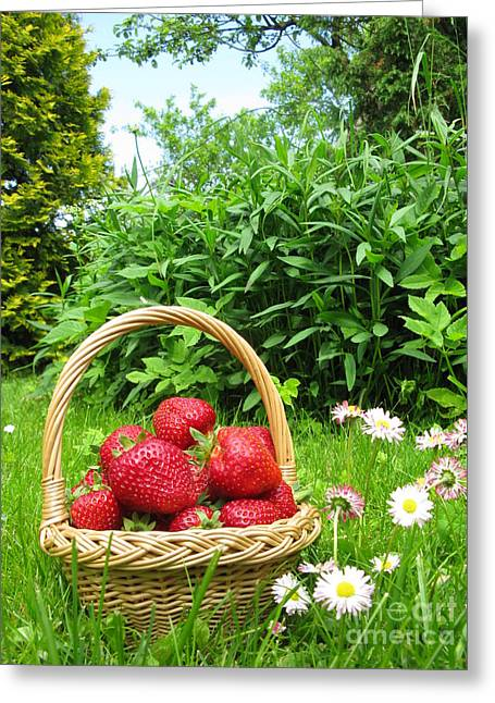 Ausra Greeting Cards - A basket of Strawberries Greeting Card by Ausra Paulauskaite