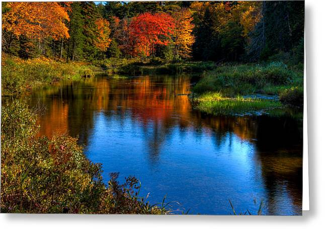 Reflections In River Greeting Cards - A Beautiful Autumn Day on the Moose River Greeting Card by David Patterson