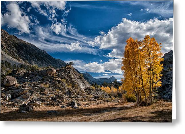 Hiking Greeting Cards - A Beautiful Fall Day Greeting Card by Cat Connor