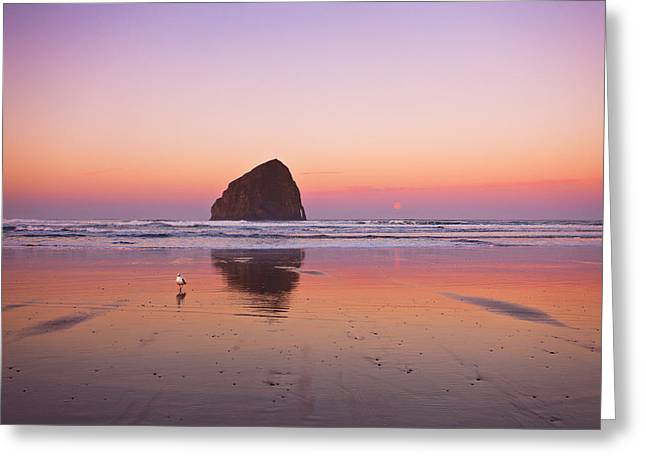 Pacific Northwest Greeting Cards - A Beautiful Morning Greeting Card by Darren  White