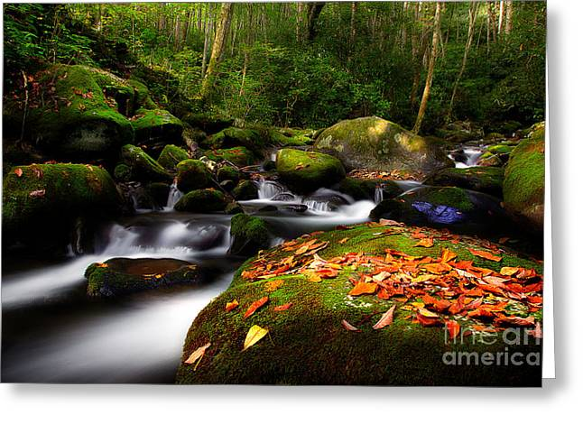 Flowing Stream Greeting Cards - A Beautiful Season Greeting Card by Michael Eingle