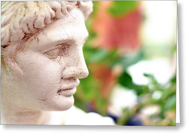 Bokhe Greeting Cards - A beautiful statue looking sideways  Greeting Card by Toppart Sweden