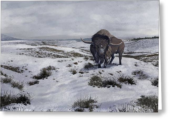 Snow-covered Landscape Digital Greeting Cards - A Bison Latifrons In A Winter Landscape Greeting Card by Roman Garcia Mora