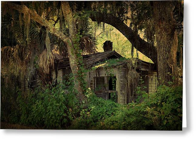 Florida Panhandle Digital Art Greeting Cards - A Bit of Old Florida in Spring Creek Greeting Card by Carla Parris