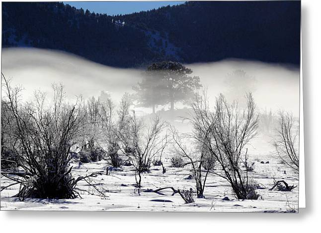 Dark Gray Blue Greeting Cards - A Blanket Of Fog Greeting Card by Shane Bechler