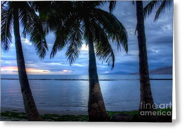 Maui Greeting Cards - A blue day in Maui Hawaii Greeting Card by Andy Jackson