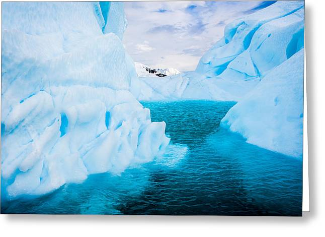 Frozen Greeting Cards - A Blue Lagoon - Antarctica Iceberg Photograph Greeting Card by Duane Miller