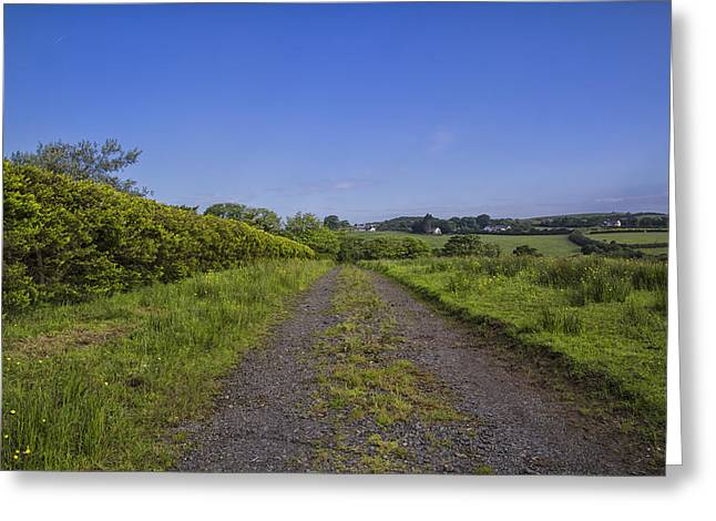 Fowler Park Greeting Cards - A Blue Sky Day Greeting Card by Nomad Art And  Design