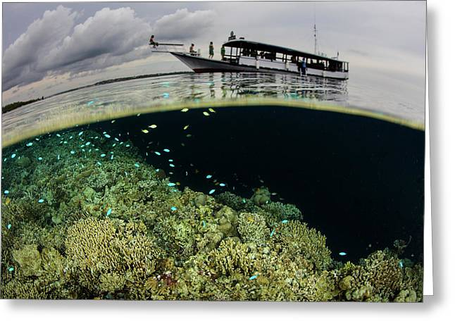 A Boat Sits Atop A Shallow Coral Reef Greeting Card by Ethan Daniels