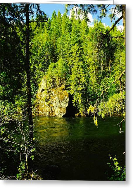 Scenic Idaho Greeting Cards - A Boulder Across The Seleway River  Greeting Card by Jeff  Swan