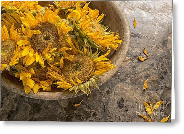 Valuable Photographs Greeting Cards - A Bowl of Sunshine Greeting Card by Terry Rowe