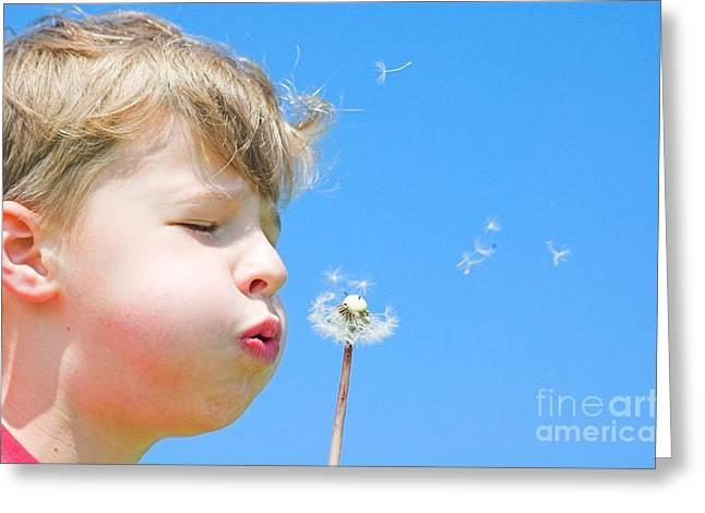 Wellbeing Greeting Cards - A boy and a dandelion Greeting Card by Michal Bednarek
