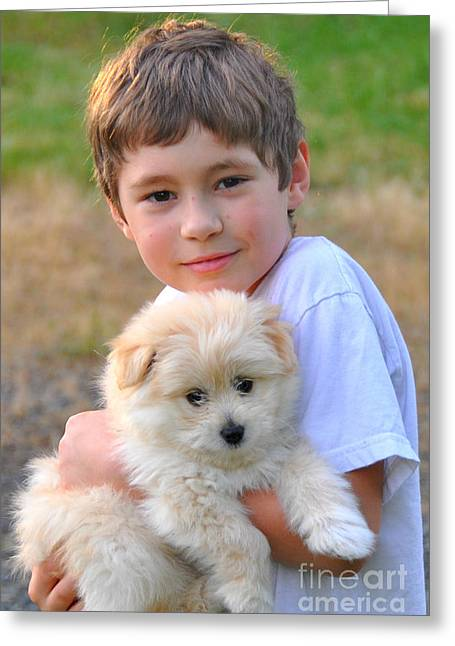 Cute Havanese Greeting Cards - A boys Best Freind Greeting Card by Mindy Bench